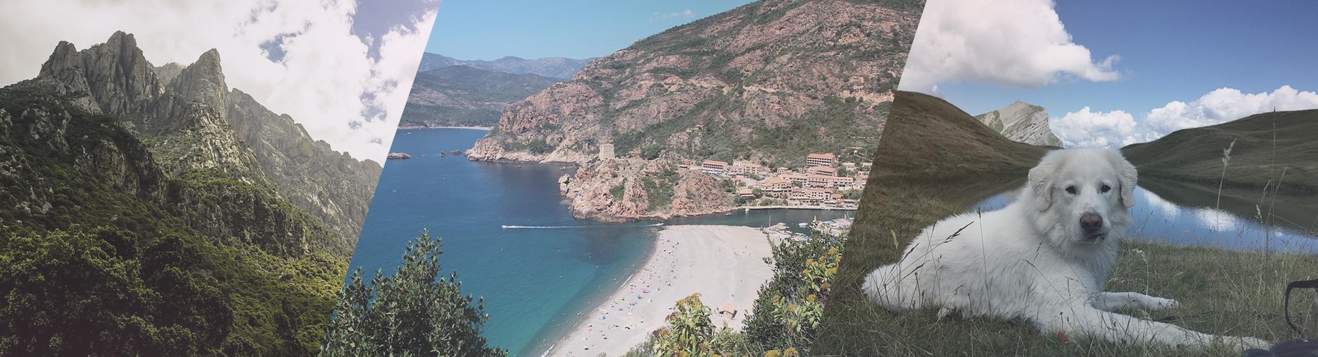 Boogie en Corse
