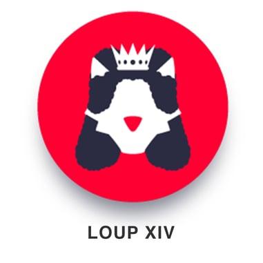 FR04-carre-loup xiv